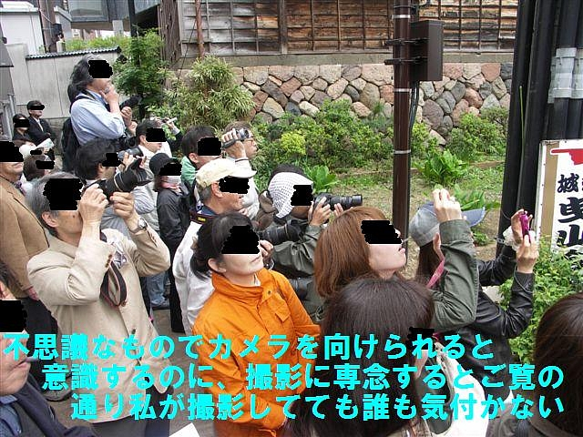 曳山祭トピックス (8)