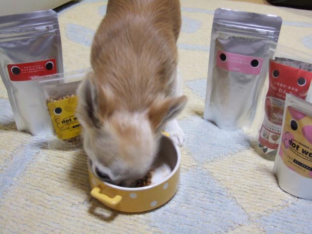 haru12食べてる