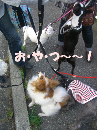 2009_05_20 003