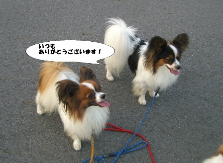 2009_05_20 022