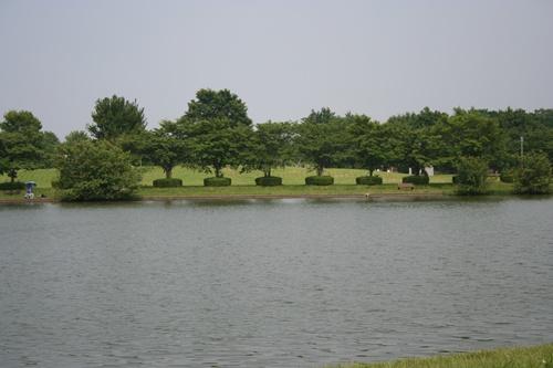 20090619_4440.jpg
