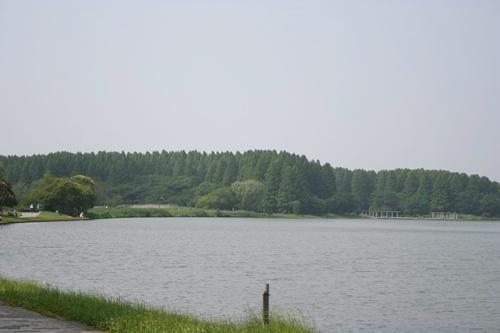 20090619_4441.jpg