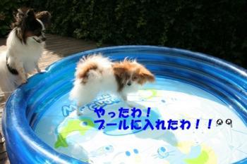 20090727_5239.jpg