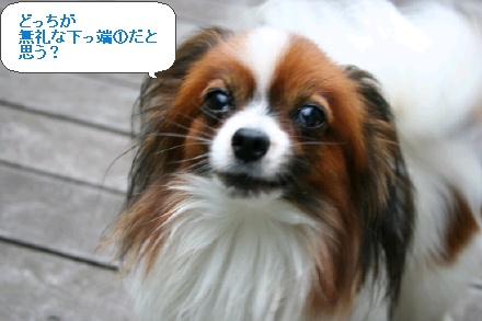 image7691129.jpg