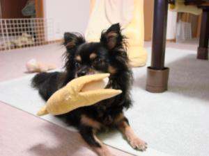 バナナが大好き