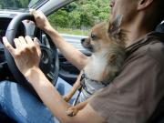 運転中です。