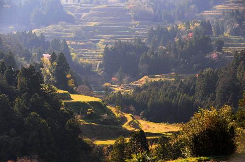 谷の一景02