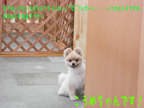 (・_|襖|←市原悦子