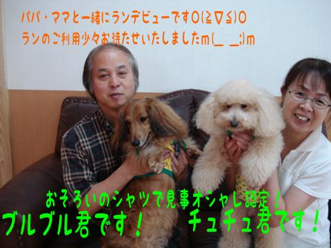 ヾ(@⌒▽⌒@)ノワーイ!
