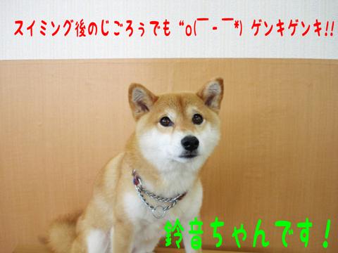 ほいほい(o‥o)/