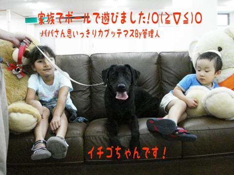 ♪⌒ヽ(*゚ω゚)ノ ヤッターッ!