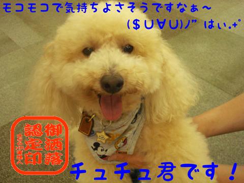 ((φ(-ω-`*)カキカキ