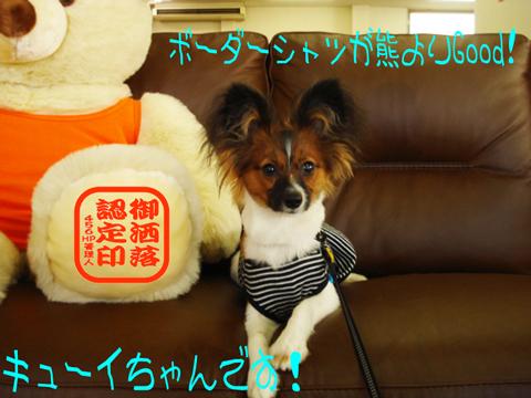 キタァ━(゚∀゚)( ゚∀)超( ゚)絶( )大(゚ )興(∀゚ )奮(゚∀゚)━キタヨー!!!!