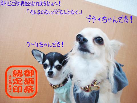 (゜o゜)ヨ(゜ロ゜)ロ(゜、゜)シ(゜・゜)クo(_ _)oペコッ♪