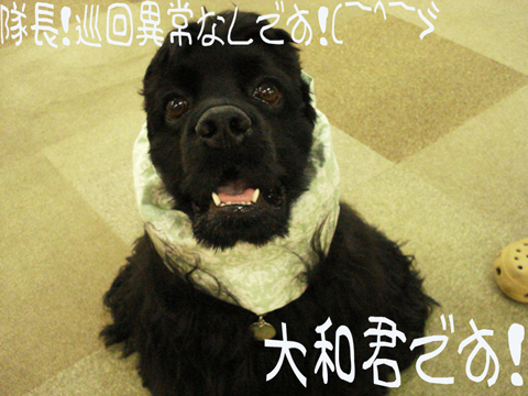 キタガヤキタガヤー(゚∀゚≡゚∀゚)キチャッタガネー!!(名古屋編)