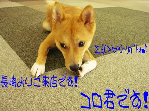 壁||∇≦)))ノ彡☆ キャハハ!!ハ゛ンハ゛ンッ!!