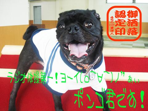 か━━ヽ(´・о・)ノ゙わ━━━いヾ(Д・`)ノ━━ぃ!!