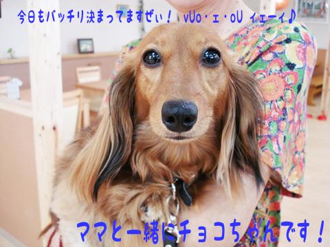 お友達みんなよろしくね~!