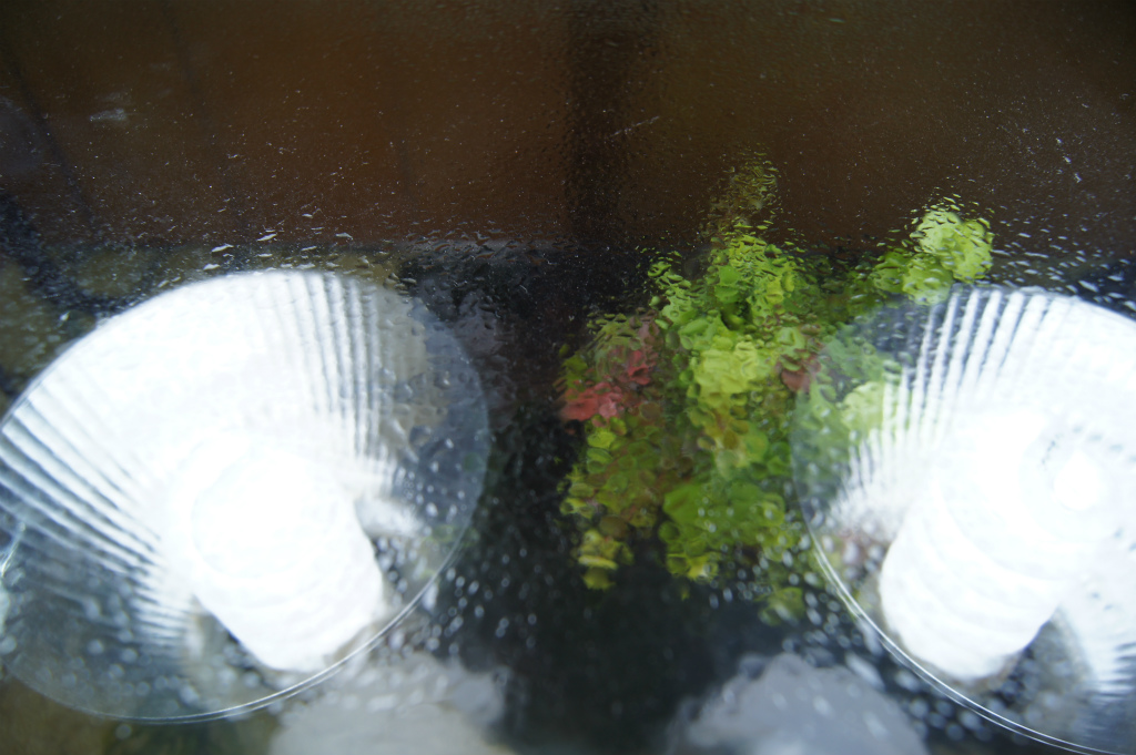 ガラス蓋の結露