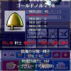 ゴールドノルマン-1