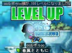 8・10投げ猫100LV