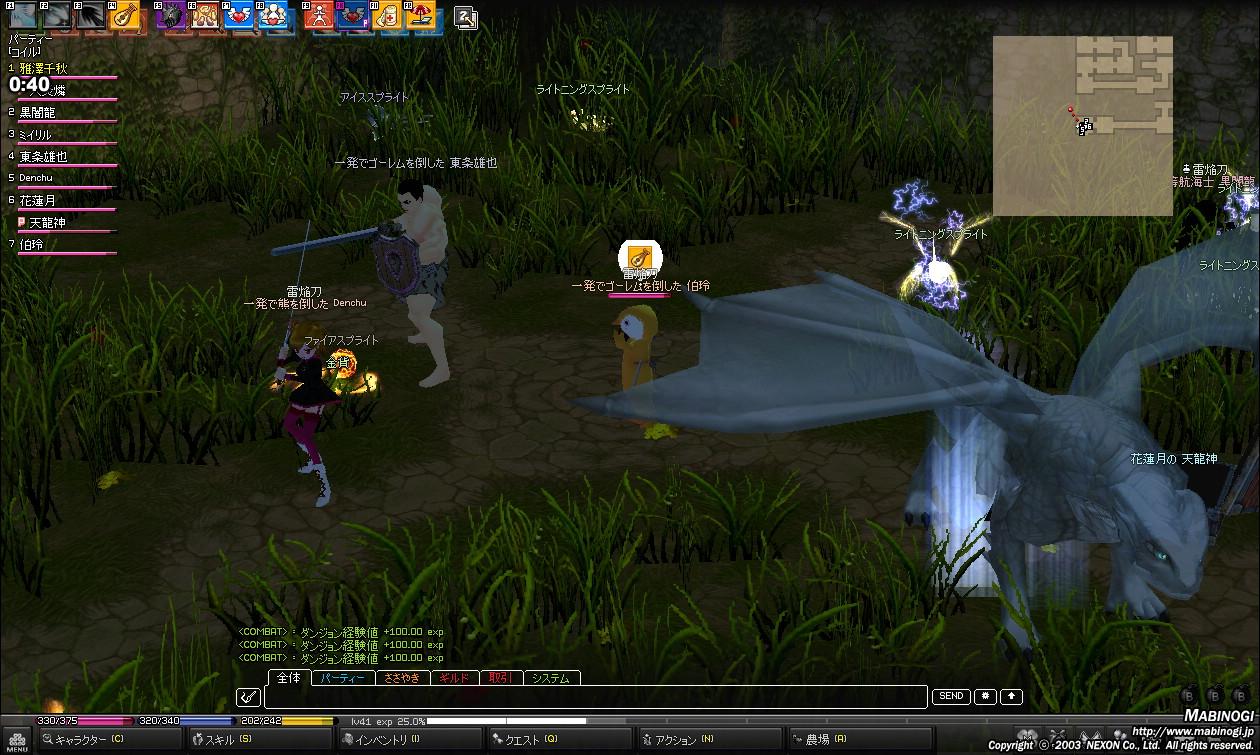 mabinogi_2011_06_20_001.jpg