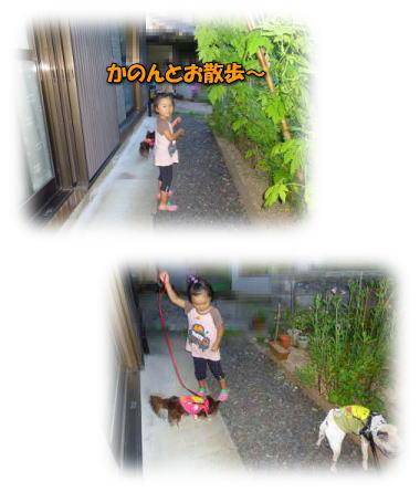 image10_20110808020300.jpg