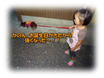 image11_20110808020300.jpg