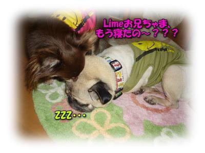 image12_20110808020300.jpg