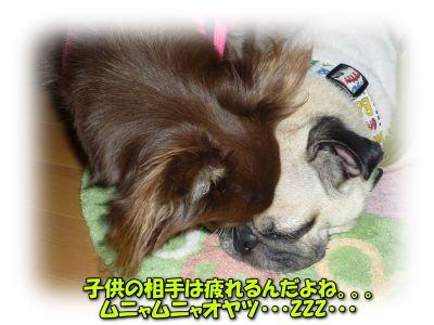 image13_20110808020322.jpg