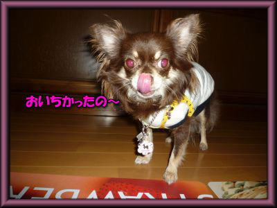 image19_20110803005331.jpg