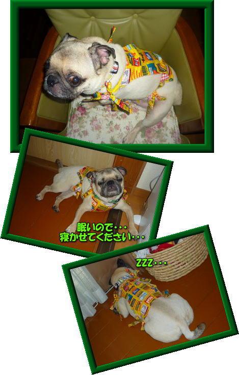 image1_20110721023602.jpg