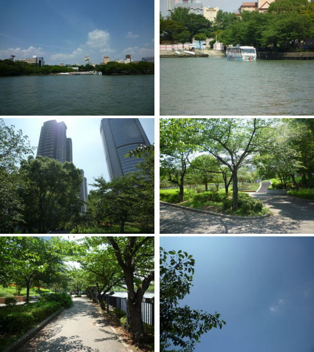 image1_20110726235807.jpg