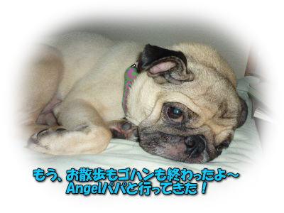 image3_20110727013811.jpg