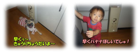 image4_20110709022825.jpg