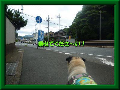 image5_20110721022648.jpg