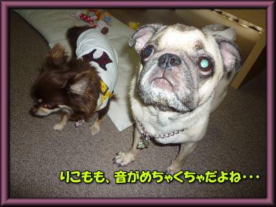 image5_20110802233954.jpg