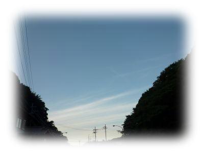image5_20110808020219.jpg