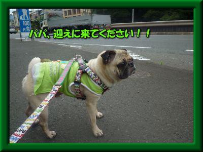 image6_20110721024247.jpg