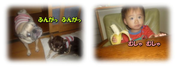 image7_20110709022824.jpg
