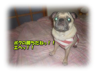 image9_20110709022844.jpg