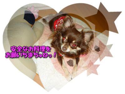 image9_20110729233751.jpg