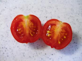 tomato24.jpg