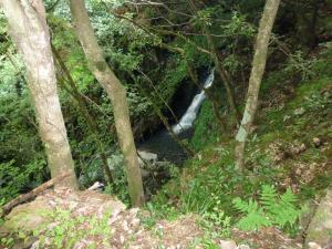 滝小さいP1010174_convert_20090908105732