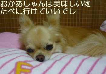 blog2011072201.jpg