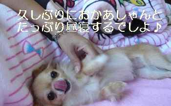 blog2011081001.jpg