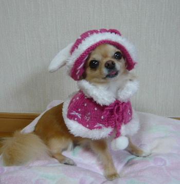 blog2011081003.jpg
