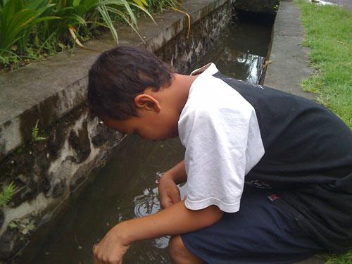 魚とりの子供