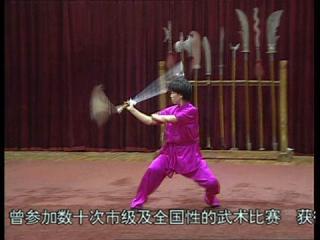 国際武術競技套路・剣術