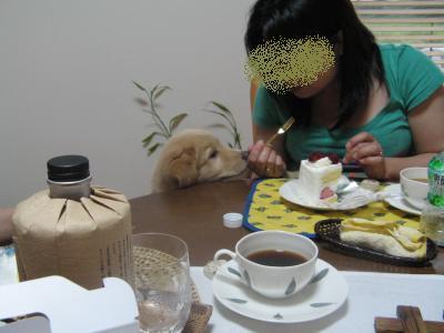 尚美ちゃんにせがみ_convert_20090629194031